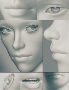 Genesis 3 Female Head Morphs